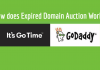Let me narrate my experience to you and you be the judge if Godaddy Auction Scams are real or not.