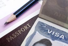 What type of Visa I need to Study in USA (2)-min